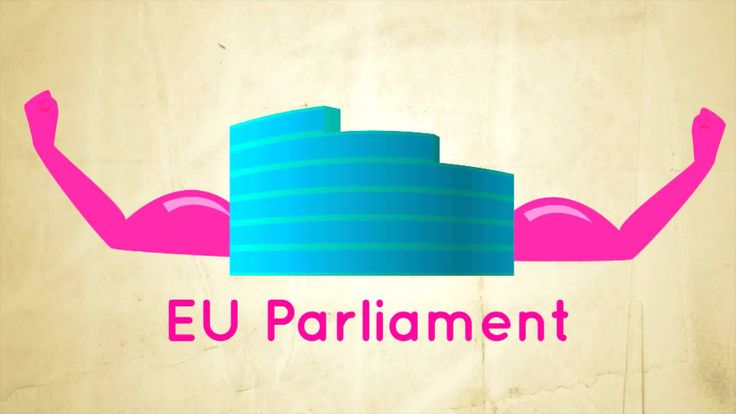 an explanation of the EU and its parliament. One of the biggest network socities