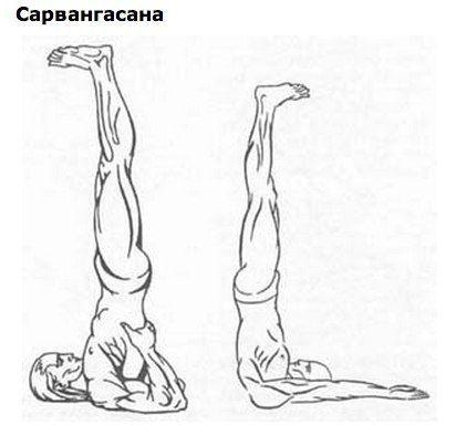 Всего одно упражнение поможет избавиться от морщин и седины   Новость   Всеукраинская ассоциация пенсионеров