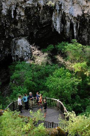 Margaret River, #Australia: Lake Cave nestled 60 metres under the karri forest and is a stunning ecotourism experience http://www.tripadvisor.com.au/ShowForum-g255101-i530-Western_Australia.html