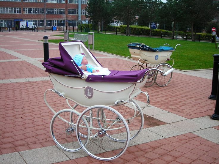 Prams Perfect Prams - Wedgwood Pram Day