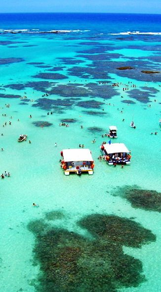 #Porto_de_Galinhas #Beach - #Brazil http://en.directrooms.com/hotels/district/8-91-1785-6707/