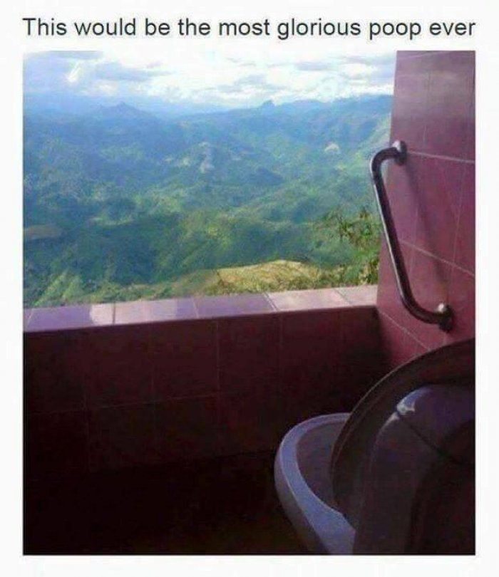 Most glorious poop ever
