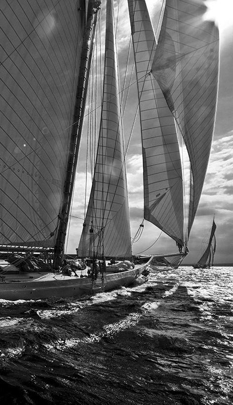 Black & White sails: Sailing Sailing, Full Sailing, Black White, It Was, Sets Sailing, Sailing Away, Tall Ships Sailing Yachts, Classic Sailboats, Sailing Boats