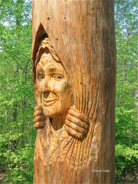 Best ideas about tree trunks on pinterest trunk