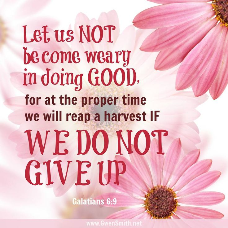 Do Not Give Up. GALATIANS 6:9