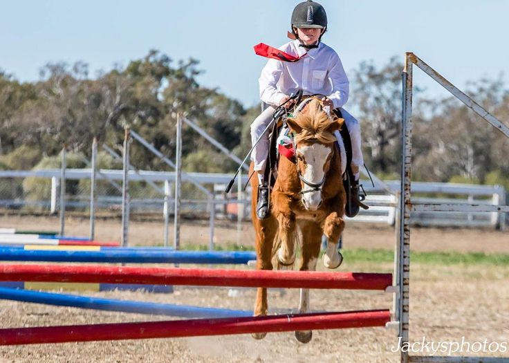 Grit your teeth and squeeze. #Walgettponycamp #proudmother #cutepony #gopancake #jumpingstar #6barmoment  #dubbophotographer www.jackysphotos.com