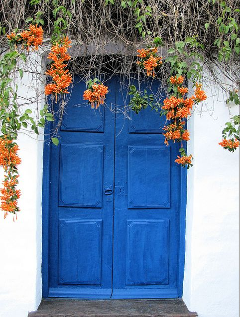 This is an entrance to a house, in San Miguel de Tucumán, Argentina.