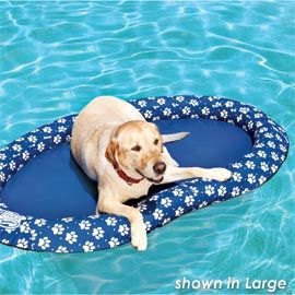 Doggie pool float..lol. My dog would love it! The Canine Pool Float