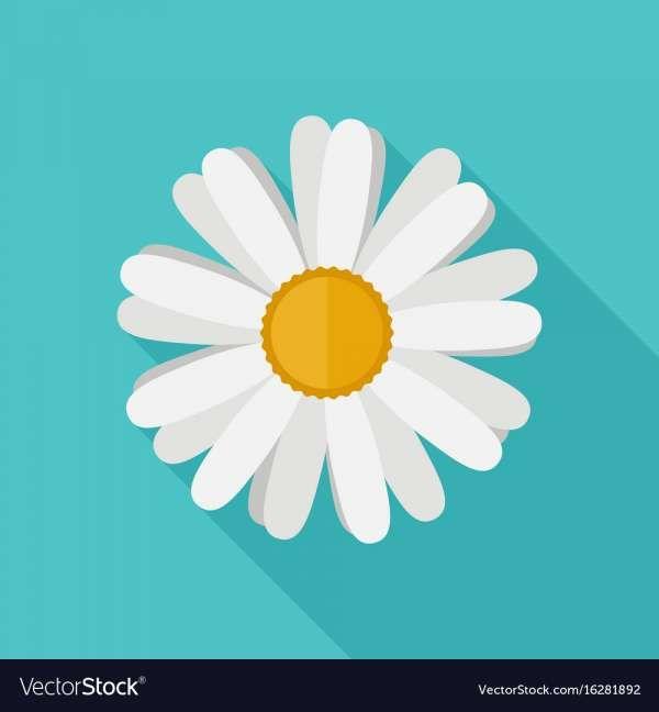 15 Daisy Flower Icon Flower Icons Daisy Flower Flower Flat