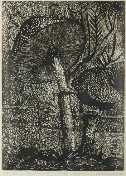 Rajmund Lewandowski - Grzyby, 1966