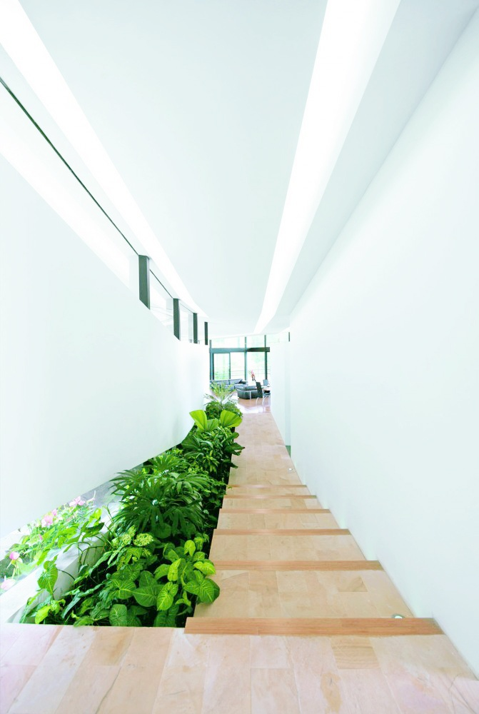 31 best images about minimalist stairs on pinterest landscape pictures wels and villas - Gardening for small spaces minimalist ...