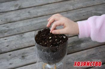9.Самополивные горшки для рассады из пластиковых бутылок.jpg