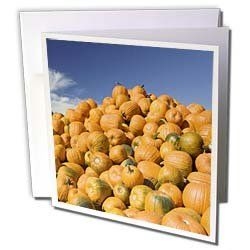 "Danita Delimont - Autumn - Massachusetts, CONCORD Pumpkins, Autumn - US22 WBI0163 - Walter Bibikow - Greeting Cards-6 Greeting Cards with envelopes by 3dRose. $10.49. Massachusetts, CONCORD Pumpkins, Autumn - US22 WBI0163 - Walter Bibikow Greeting Card is a great way to say ""thank you"" or to acknowledge any occasion. These blank cards are made of heavy-duty card stock with a gloss exterior and a matte interior for smudge free writing. Cards are creased for easy fol..."