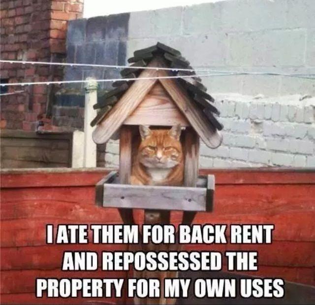 53 Best Images About Property Management On Pinterest