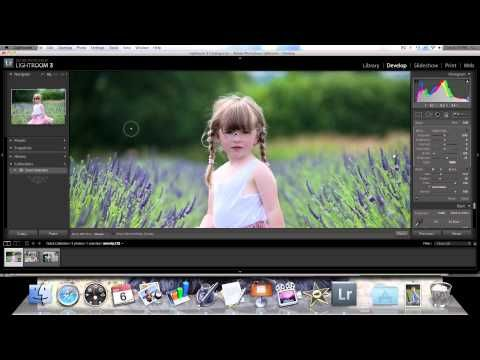 How to use the adjustment brush in Lightroom.