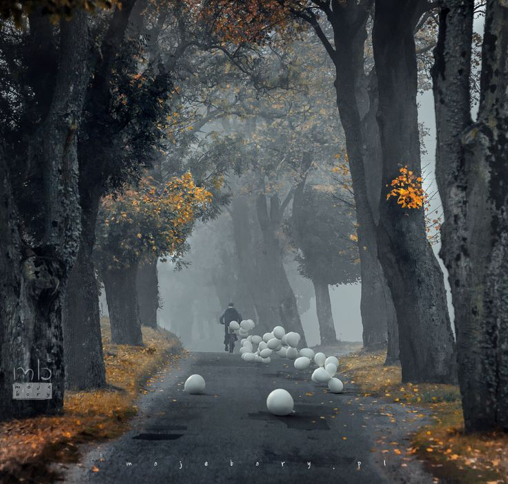 A man on a bike who kept losing balloons by Mariusz Warsinski on 500px