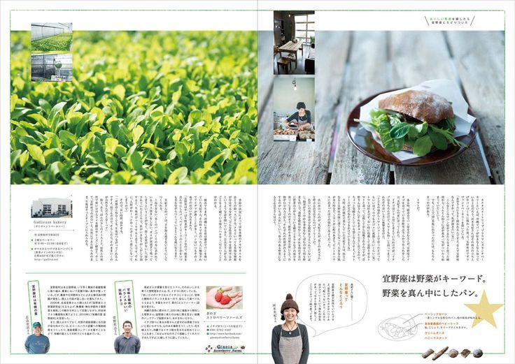 おきなわ 宜野座 Okinawa Ginoza Newspaper