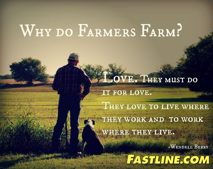 Why farmers farm. It's not just for the love of it. The land takes ahold of you, never quite let's you go.