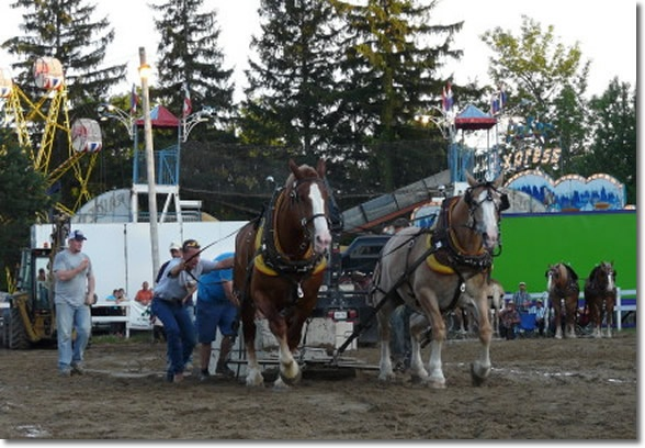 200 hundred years people. 200 HUNDRED YEARS and it's this weekend. The Williamstown Fair Ontario