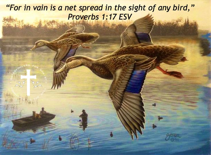 159 best images about waterfowlers for christ on pinterest for Bible verses about fish