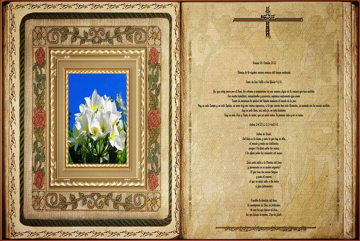 Lecturas del Viernes de la 29ª semana del Tiempo Ordinario  Fuente: Ciudad Redonda  MISA http://magnificat.tv/es/taxonomy/term/1  EVANGEL...