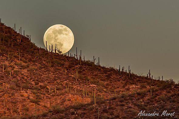 Super moon rising over the desert
