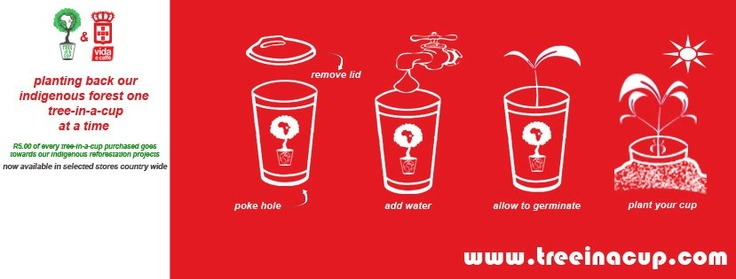 Design for the Tree-In-A-Cup and Vida e Caffe co - branding    Facebook Cover Photo Design 2