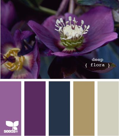 deep flora...pretty jewel tones!   Tera, if you stumble upon this, it made me think of some of the wedding color scheme ideas you've been posting!