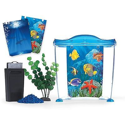 25 Best Ideas About Small Fish Tanks On Pinterest