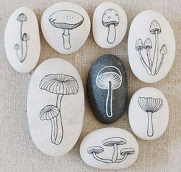 17 beste afbeeldingen over Paddestoelen op Pinterest
