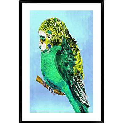 Green Budgie #2 Framed Wall Art