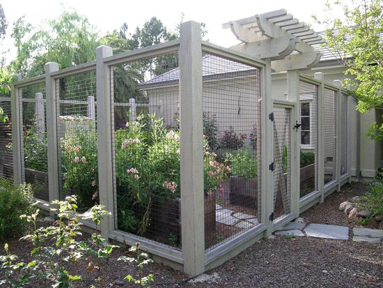 custom deer fence garden enclosure with pergola