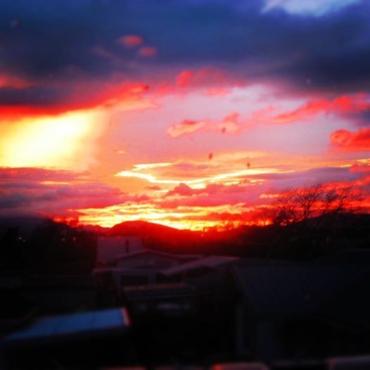 View of the sunrise from our kitchen window this morning #NewZealand
