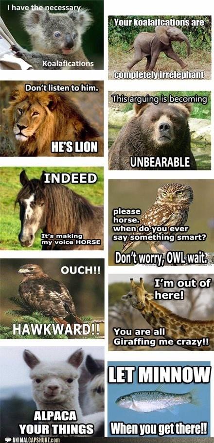Can't stop laughing: Laughing, Animal Jokes, Animal Humor, Giggl, Funny Stuff, Funny Animal, Animal Puns, Hilarious, Smile