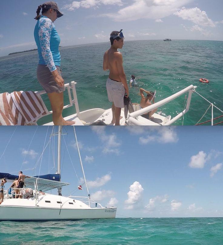 Coral reef snorkeling trips in Key West Florida on sailing catamaran! http://www.footloosekeywest.com #snorkel #snorkeling #KeyWest #CoralReef #snorkelspots