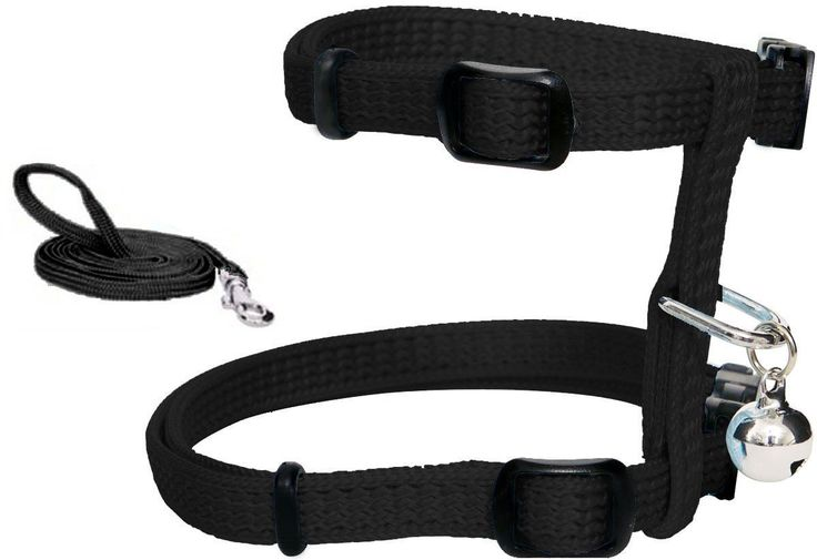 SIKANTISPETS: The best cat harness and leash on the market! Get all information here!
