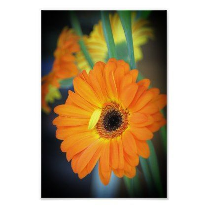Flowers Bright Orange Flower Poster - photography picture cyo special diy