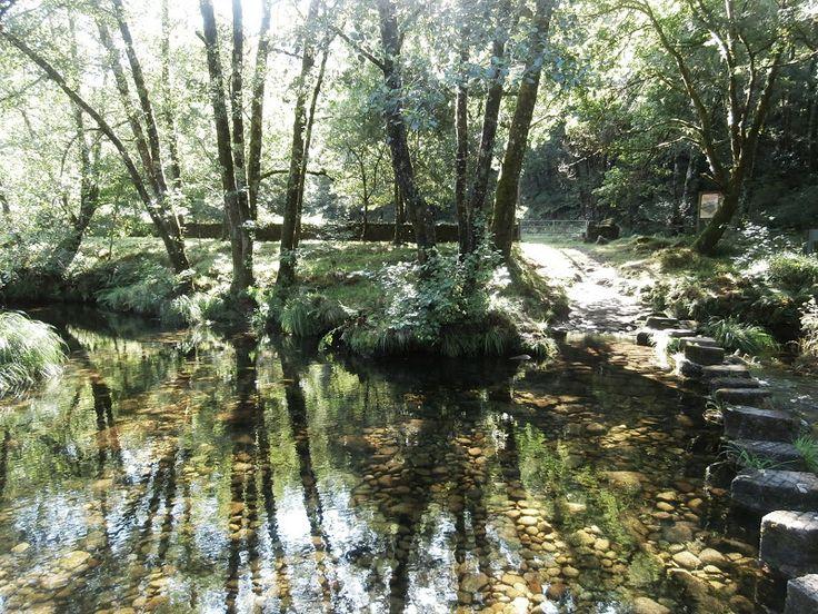 1000 Lugares en Galicia: Visita a Caritel en Ponte Caldelas, Pontevedra. El...