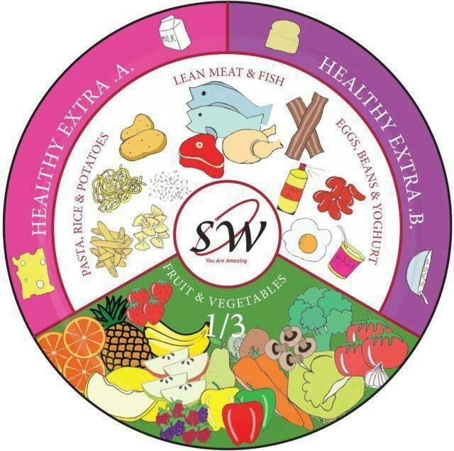 Slimming world plate design