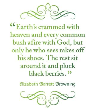 "Earth's crammed with heaven and every common bush afire with God, but only he who see takes off his shoes. The rest sit around it and pluck blackberries"" EBB"