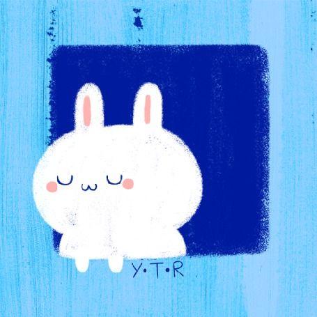 Милый заяц выглянул из окна (YTR)