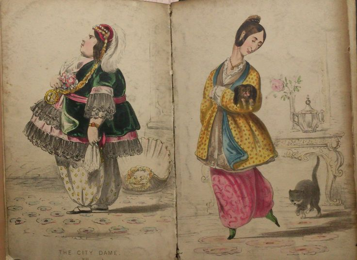 Beauties of Bloomerism, Fashion Satire, Womans Rights Caricature, Dress Code, Ladies Costume, Victorian Dress