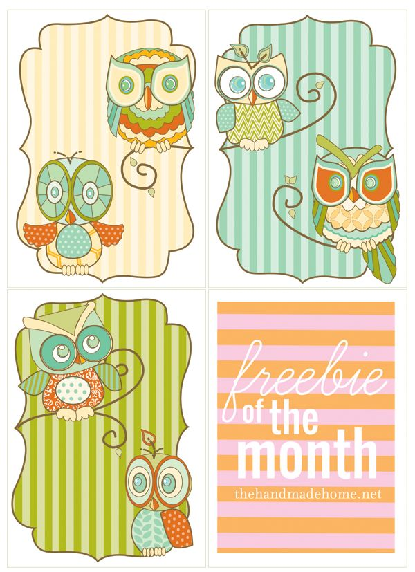 How yummy are these owls?!  When I have a house of my own, I will frame these in my home.