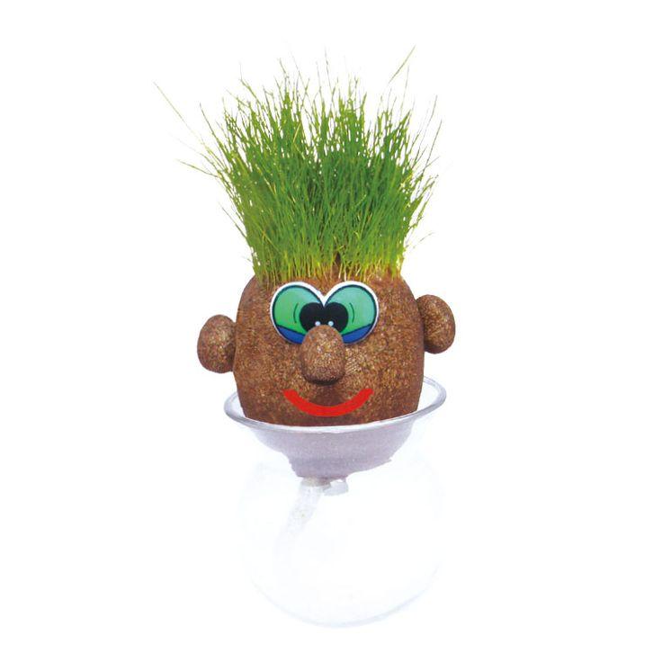 Dompel Jeroen Groen Grashoofd een aantal uren onder water en plaats hem daarna in de bijgeleverde vaas. De haren zullen groeien naarmate hij genoeg water en zonlicht krijgt. Zo leert het kind spelenderwijs om goed voor een plantje te zorgen. Als je het goed doet, dan ...