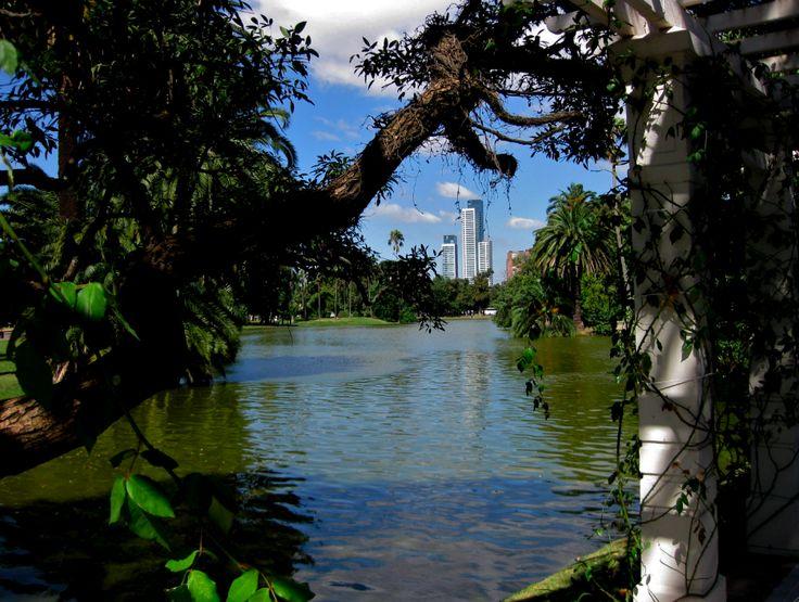 Buenos Aires, Rosedal  Nature vs Modern