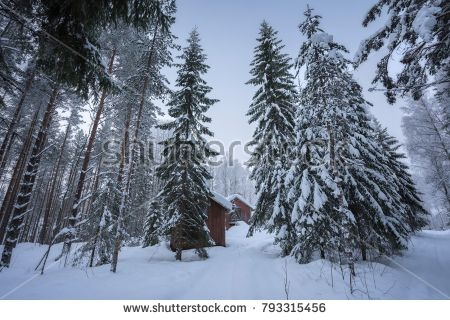 old barrack in  an winter forest landscape