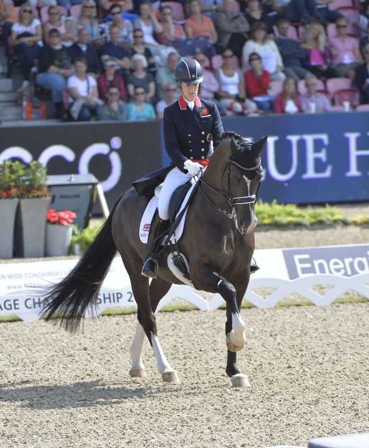 Charlotte Dujardin Retains Olympic GOLD In Dressage oOnboard Valegro in Rio #GBR #Rio2016    http://dailym.ai/2b9cotN