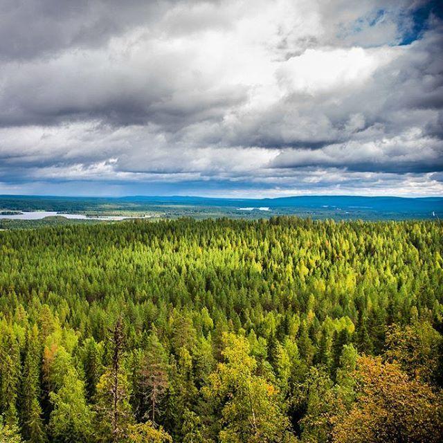 Kupson kutsu -reitti Pudasjärvellä johdattaa mielettömälle näköalapaikalle, josta löytyy myös kota tulistelua varten 💚 #pudasjärvi #pohjois-pohjanmaa #finland #thisisfinland #suomiretki #summer #autumn #nature #view #breathtaking