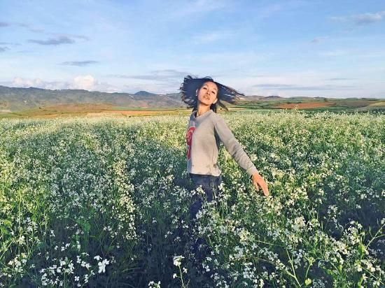 the flower field between Aung Pan and Pindaya