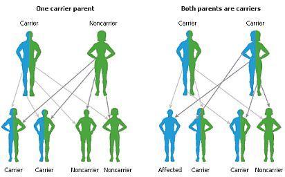 Afbeeldingsresultaat voor monogene aandoeningen